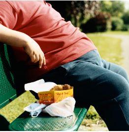 Mauvais lipides - surpoids - fast-food