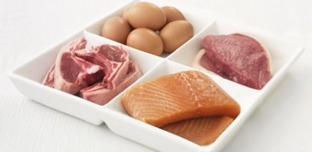 Apports en Protéines