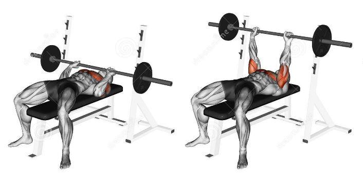 Développé couché prise serrée - Superset biceps triceps