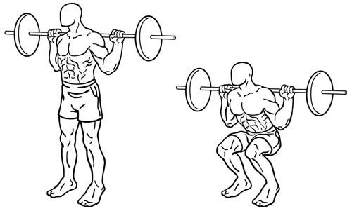 Back Squat - squat arrière - squat classique