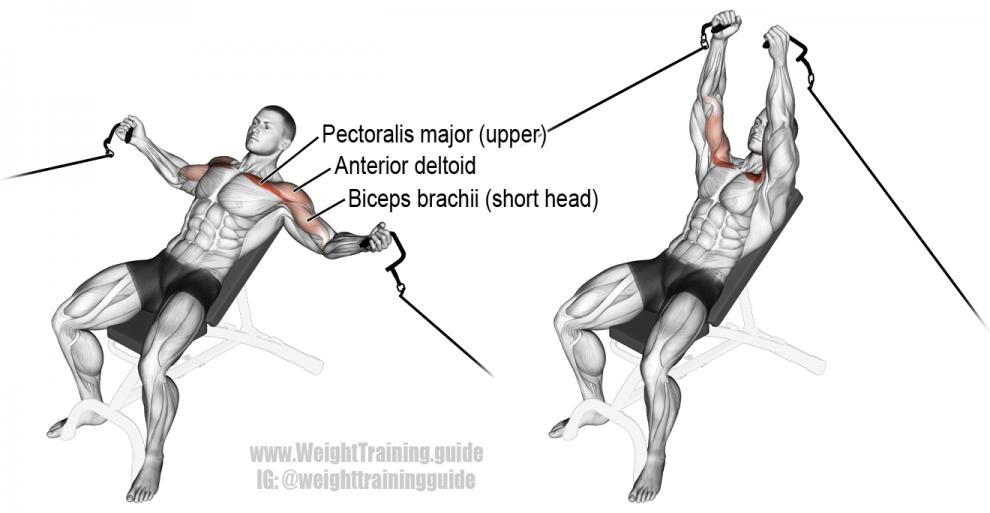 Ecartés inclinés poulie - Exercice Musculation Pectoraux