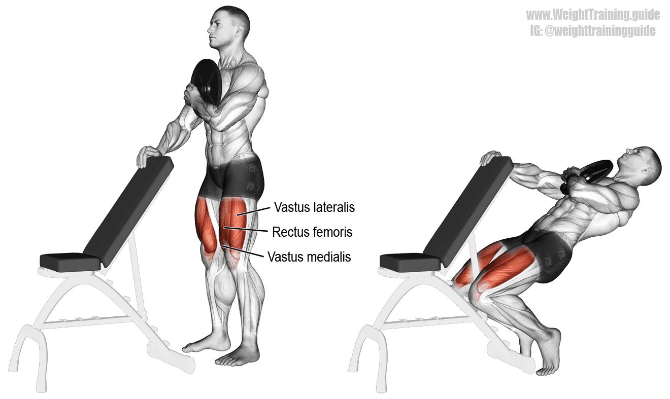 sissy squat - Musculation Quadriceps